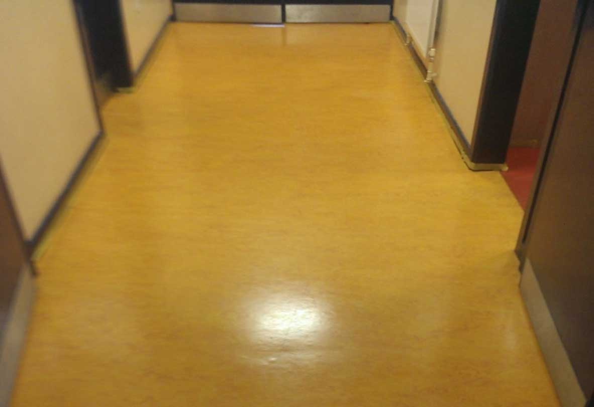 Nano powershine for vct floors jsk eco cleaning solutions provide vct dailygadgetfo Images